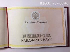 Диплом кандидата наук 2013-2017 годов