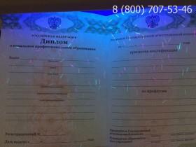 Диплом о начальном образовании 2011-2017 года
